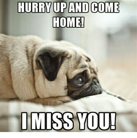 I Miss You Even When I M Not Horny Someecards I Love You Memes For
