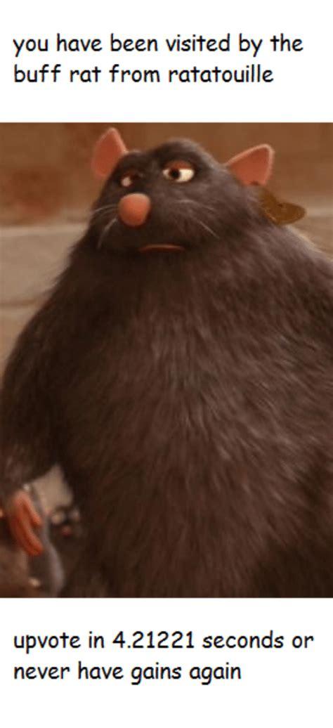 Ratatouille Memes