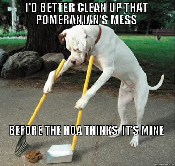 Dog Poop Memes