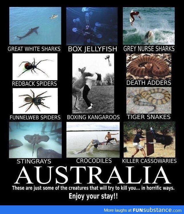 Winter Is Coming For Australia By Ltlongshot Meme Center