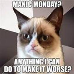 Grumpy cat monday Memes