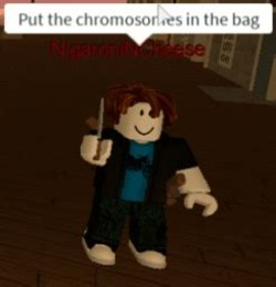 Put the chromosome in the bag Memes
