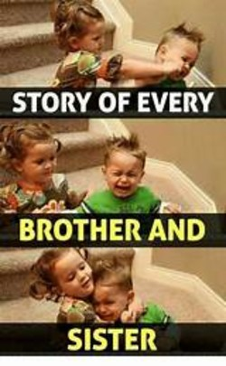 Sister And Brother Memes