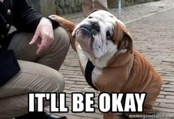 Dog - It'll be okay